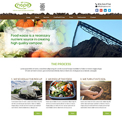 Natural Organic Process Enterprises version 1